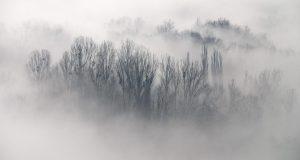 Cómo capturar agua de la niebla y abastecer agua contra la sequía