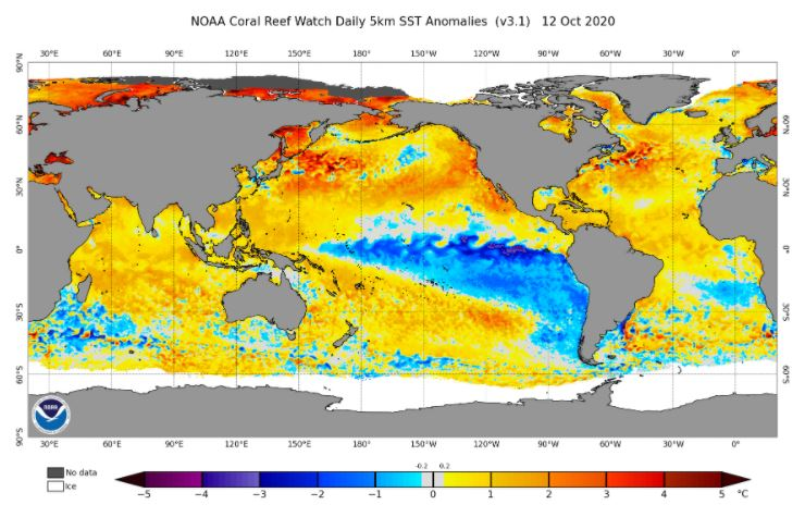 Anomalías en temperaturas de la superficie del mar. (NOAA)