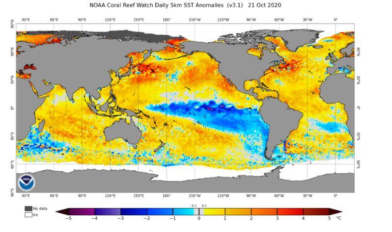 Anomalías de la temperatura de la superficie del mar en el mundo. 21 de octubre 2020. Fuente: NOAA