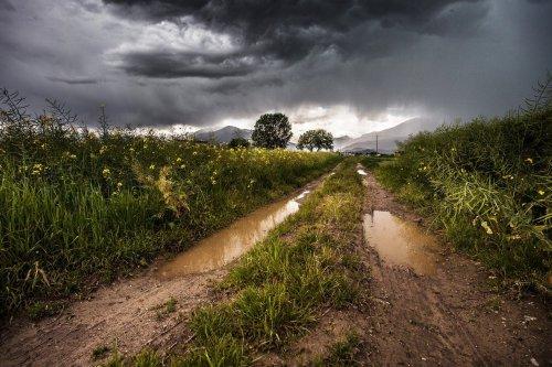 Martes y viernes con mucha lluvia en Argentina