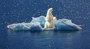 A este ritmo la Tierra se calentará 3°C a final de siglo, más de lo previsto
